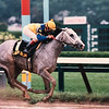 Lady's Secret, Whitney Handicap, G1, Saratoga, August 2, 1986