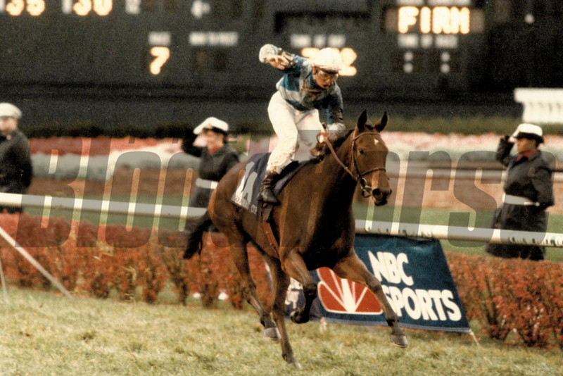 Miesque wins the 1988 Breeders' Cup Mile<br /> Skip DIckstein Photo