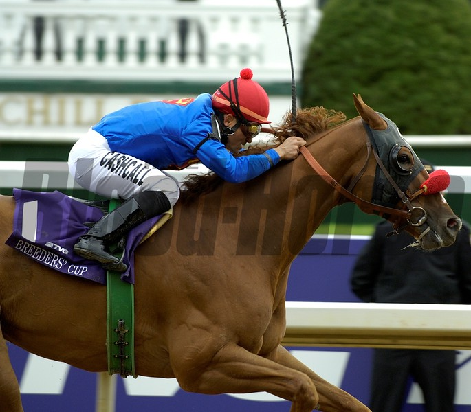 Thor's Echo wins the 2006 Breeders' Cup Sprint<br /> Anne M. Eberhardt