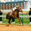 Timber Country wins the 1994 Breeders' Cup Juvenile at Churchill Downs.<br /> Photo by: Skip Dickstein
