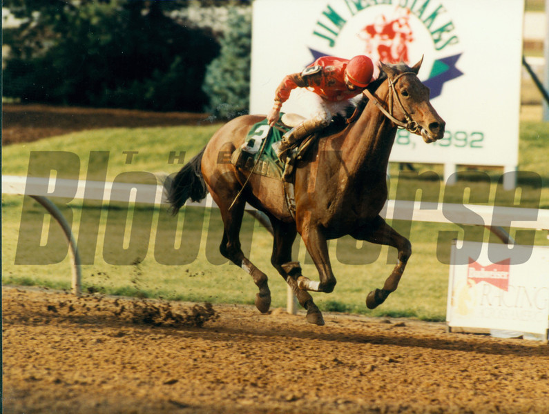 Lil E Tee and jockey Pat Day wins the 1992 Jim Beam Stakes at Turfway Park.<br /> Photo by: SKip Dickstein