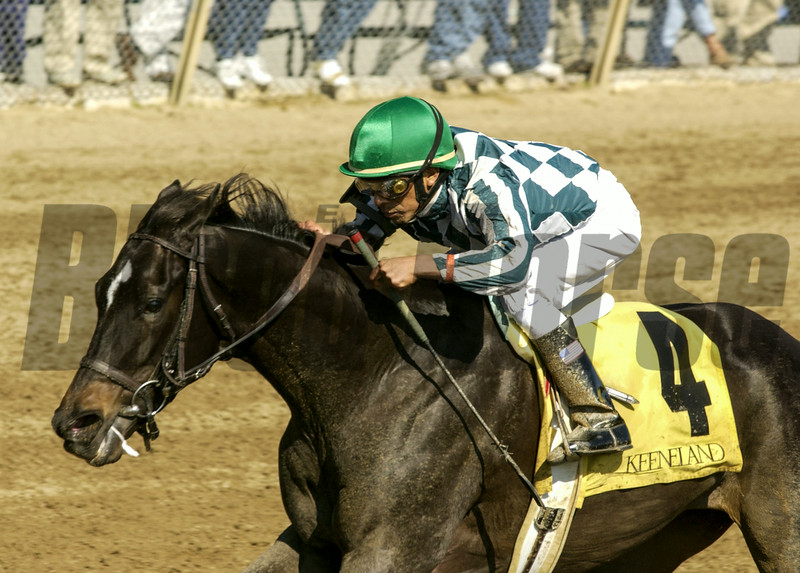 Victory Ride with Edgar Prado up wins the Madison with Away  Keeneland, April 10, 2002<br /> KeeVictoryRideOrigs image 198<br /> Photo by Anne M. Eberhardt