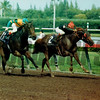 Dancing Spree wins the 1989 Breeders' Cup Sprint<br /> Skip Dickstein