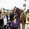 Cat Thief in the winner's circle after the 1999 Breeder's Cup Classic. <br /> Skip Dickstein