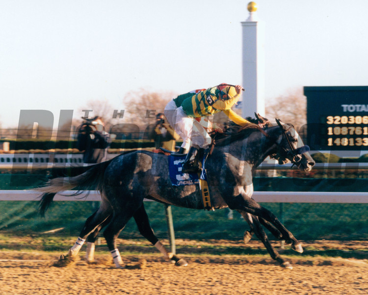 Silver Charm wins the Clark Handicap at Churchill Downs.<br /> Photo by: Anne M. Eberhardt