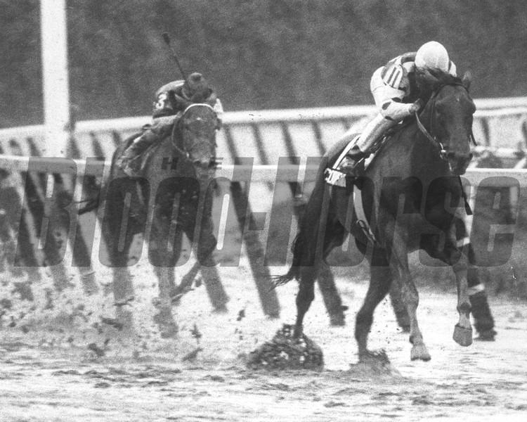 Conquistador Cielo wins the 1982 Belmont Stakes<br /> Photo by: Bob Coglianese/NYRA