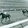 Native Diver wins the Hollywood Gold Cup on July 17, 1965 at Hollywood Park
