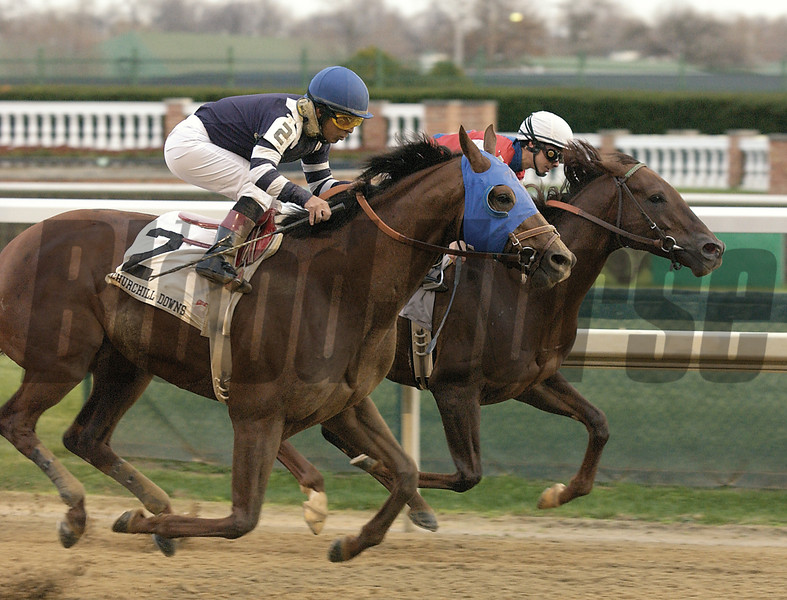 Lido Palace (#2) defeats Crafty Shaw to win the Clark Handicap (gr. II) at Churchill on Nov. 29, 2002.<br /> Clark Handicap 11/29 Origs image 15<br /> Photo by Anne M. Eberhardt