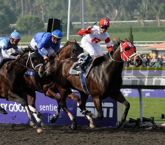 Furthest Land wins the 2009 Breeders' Cup Mile<br /> Skip Dickstein Photo