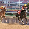 Big Drama wins the 2010 Breeders' Cup Sprint<br /> Anne M. Eberhardt Photo