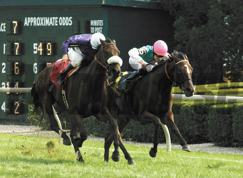 Riskaverse with Mark Guidry up (on outside/purple silks) defeats Zenda with Richard Hughes up to win the Queen Elizabeth II Challenge Cup (gr. I) at Keeneland on Oct. 12, 2002.<br />  KeeOrigs1 image 83<br /> Photo by Anne M. Eberhardt