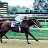 Kona Gold wins the 2000 Breeders' Cup Sprint<br /> Anne M. Eberhardt Photo