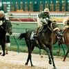 Gulch wins the 1988 Breeders' Cup Sprint<br /> Skip Dickstein