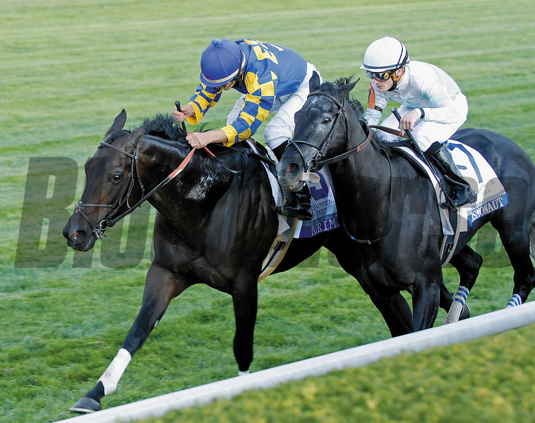 CAPTION: Purim with Jamie Theriot up wins the Shadwell Turf Mile (gr. I).<br /> Keeneland stakes at Keeneland on Oct. 6, 2007, in Lexington, Ky.<br /> Shadwell image9021<br /> Photo by Anne M. Eberhardt