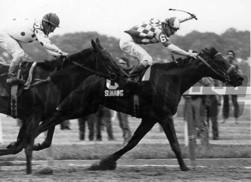 Summing and Jockey George Martins winning the 1981 Belmont Stakes<br /> NYRA Photo