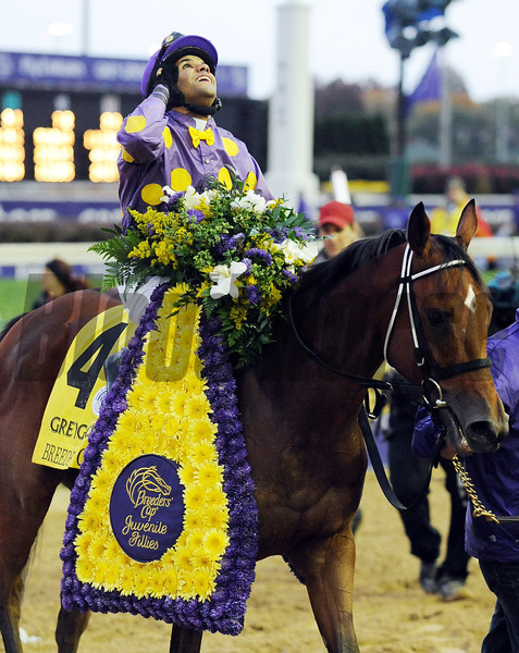 Awesome Feather wins the Juvenile Fillies at Churchill Downs, Nov 2010<br /> Photo by: Dave Harmon