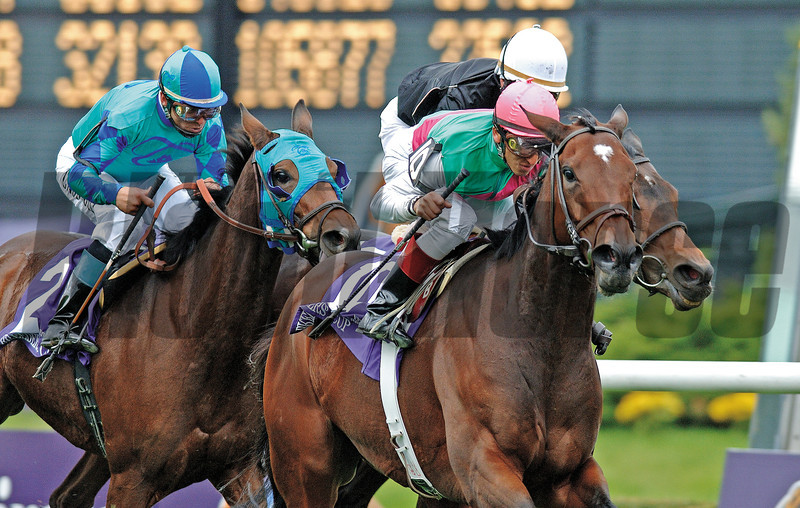 Intercontinental wins the 2005 Breeders' Cup Filly & Mare Turf.<br /> Mike Corrado