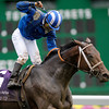 Photo By Skip Dickstein - The winner of the Breeders' Cup Filly and Mare Turf Lahudood at Monmouth October 27, 2007.