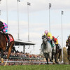 Chamberlain Bridge with Jamie Theriot wins the Turf Sprint on Nov. 6, 2010.<br /> Photo by Skip Dickstein - 2010 Breeders' Cup