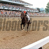 Risen Star wins the 1988 Belmont Stakes<br /> Photo by: Skip Dickstein