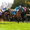 Film Maker #9 with Edgar Prado up wins the Queen Elizabeth Challenge Cup (gr. I) at Keeneland on Oct. 11, 2003. Maiden Flower with David Flores finished second, Casual Look was third (outside left #7) and Ocean Drive #10 in fourth.<br /> KeeRacing10/11Origs 2 image 44<br /> PHoto by Anne M. Eberhardt