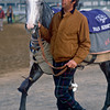Henry Cecil introduces his filly Indian Skimmer to the backstretch at Churchill Downs for the Breeders Cup 1988<br /> Trevor Jones