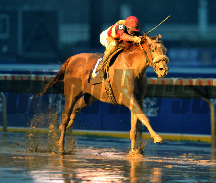 Photo by Skip Dickstein - Corinthian with jockey Kent Desormeaux wins the Breeders' Cup Dirt Mile at Monmouth Park in Oceanport, New Jersey October 26, 2007.