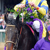 Street Sense wins the Breeders Cup Juvenile with Calvin Borel aboard