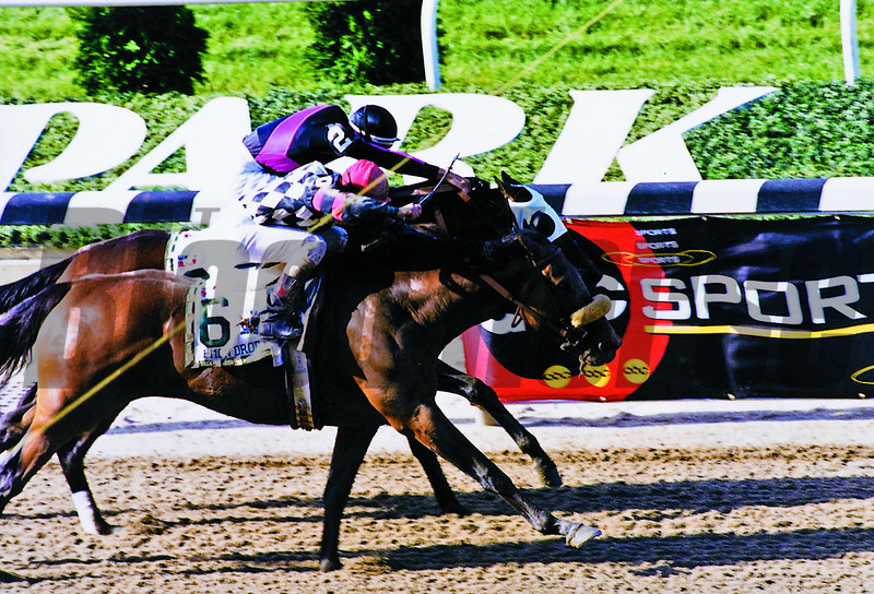 Lemon Drop Kid and Vision Verse in the Belmont<br /> Photo by Rick Samuels