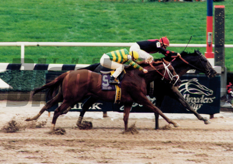 Unbridled's Song defeats Hennessy in the 1995 Breeders' Cup Juvenile<br /> Anne M. Eberhardt Photo