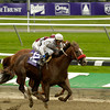 CAPTION: <br /> Stevie Wonderboy with Garrett Gomez wins the Juvenile. Henny Hughes and Edgar Prado in second<br /> Breeders Cup day<br /> Oct. 29, 2005, at Belmont Park in Elmont, NY<br /> JuvenileCard2  image66<br /> Photo by Anne M. Eberhardt