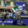 Caption: <br /> California Flag with Joe Talamo wins the Turf Sprint<br /> Breeders' Cup Saturda at Oak Tree/Santa Anita on Nov. 7, 2009, in Pasadena, California.<br /> Origsimage<br /> PHoto by Anne M. Eberhardt