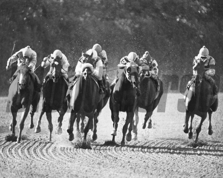 1980 Marlboro Cup won by Winter's Tale <br /> Photo by Bob Coglianese