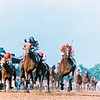 Alysheba (#9) winning the 1987 Kentucky Derby