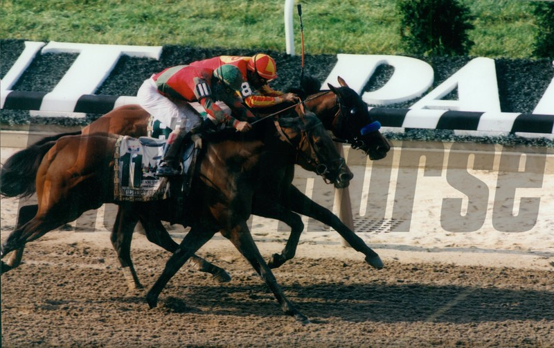 Victory Gallop defeats Real Quiet in the 1998 Belmont Stakes <br /> Photo by: Rick Samuels