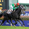 Caption: Pluck with Garrett Gomez wins the Breeders' Cup Juvenile Turf at Churchill Downs on Nov.6, 2010, in Lexington, KY.<br /> JuvTurfOrigs2 image540<br /> Photo by Anne M. Eberhardt
