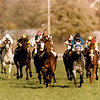 Miss Alleged wins the 1991 Breeders' Cup Turf (G1T).<br /> Anne M. Eberhardt Photo