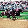 Tiznow (right) wins the 2000 Breeders' Cup Classic at Churchill Downs over Giant's Causeway <br /> Anne M. Eberhardt Photo