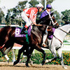 Batch 62, Grand Slam in the Breeders' Cup Juvenile Colts in 1997, photo by Rick Samuels