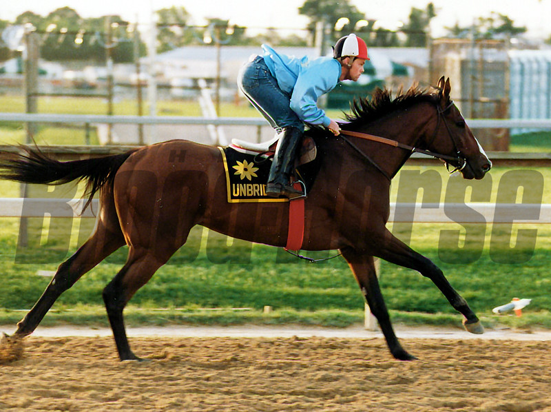 Unbridled training for the 1990 Preakness Stakes<br /> Skip Dickstein Photo