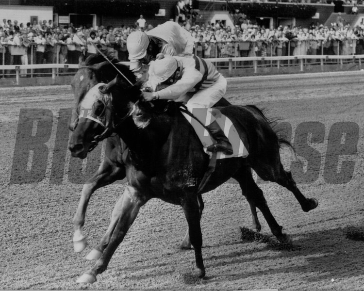 Personality wins the Jim Dandy at Saratoga Race Course. <br /> Photo by: Bob Coglianese