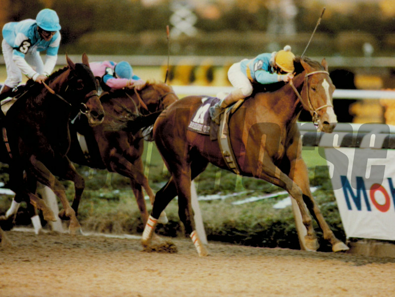 Unbridled wins the 1990 Breeder's Cup Classic. <br /> Photo by Skip Dickstein