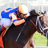 Uncle Mo with John Velazquez aboard wins the Juvenile Division of the 2010 Breeders Cup.  <br /> Mark Mahan Photo.