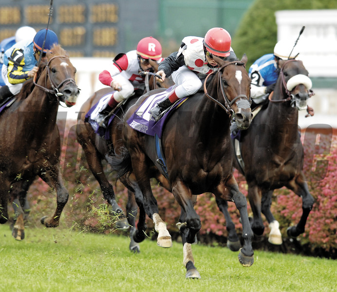Photo by Skip Dickstein - Miesque's Approval wins The Breeders'  Cup Mile with Street Sense held today November 4, 2006 at Churchill Downs in Louisville, Kentucky.