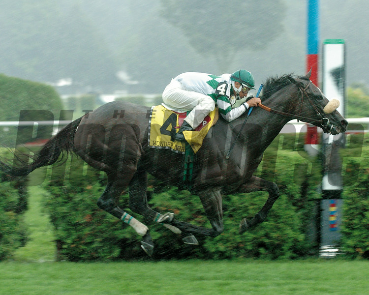 Wonder Again wins the 2004 Diana Handicap at Saratoga.<br /> Adam Coglianese Photo