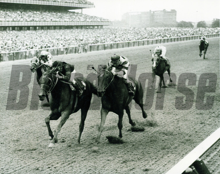 Buckpasser in the Suburban Handicap in 1967 at Aqueduct Park.<br /> Photo by: Coglianese Photos