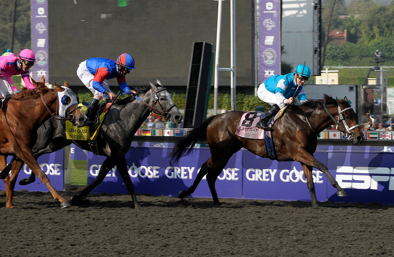 Caption: She Be Wild with Julien Leparoux wins the Grey Goose Breeders' Cup Juvenile Fillies.<br /> Breeders' Cup Friday at Oak Tree/Santa Anita on Nov. 6, 2009, in Pasadena, California.<br /> Origs2  image590<br /> PHoto by Anne M. Eberhardt