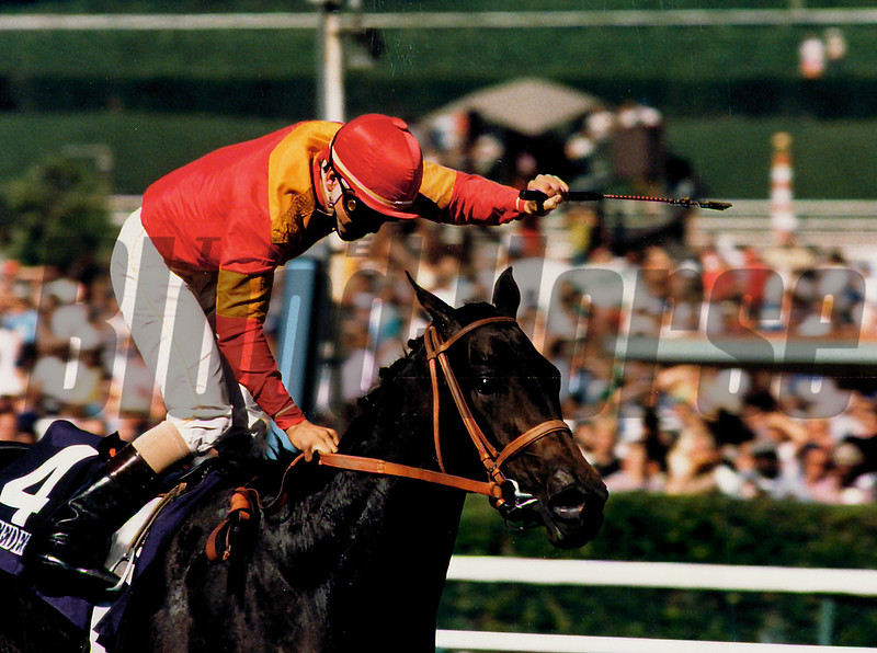 Brave Raj wins the 1986 Breeders' Cup Juvenile Fillies<br /> Skip DIckstein Photo