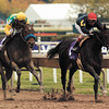 Storm Flag Flying wins the 2002 Breeders' Cup Juvenile Fillies (gr. I).<br /> Skip Dickstein Photo