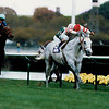 Cozzene wins the 1985 Breeders' Cup Mile<br /> Skip Dickstein Photo